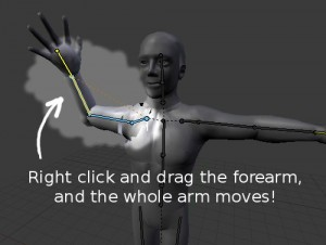 Posing the arm. Click and drag the forearm, and the whole arm moves!